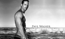 Paul Walker Desktop wallpaper