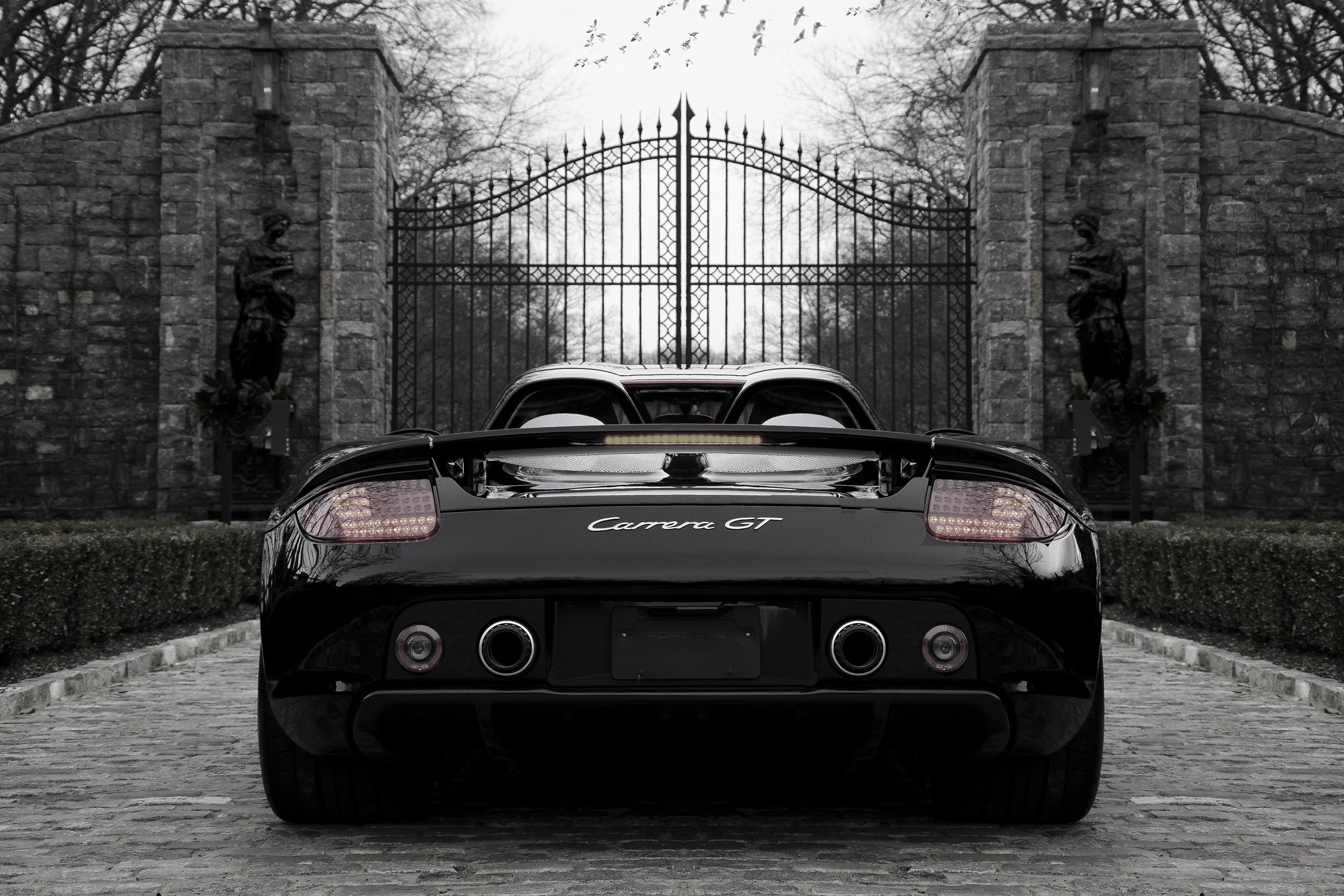 Porsche Carrera GT Desktop wallpaper