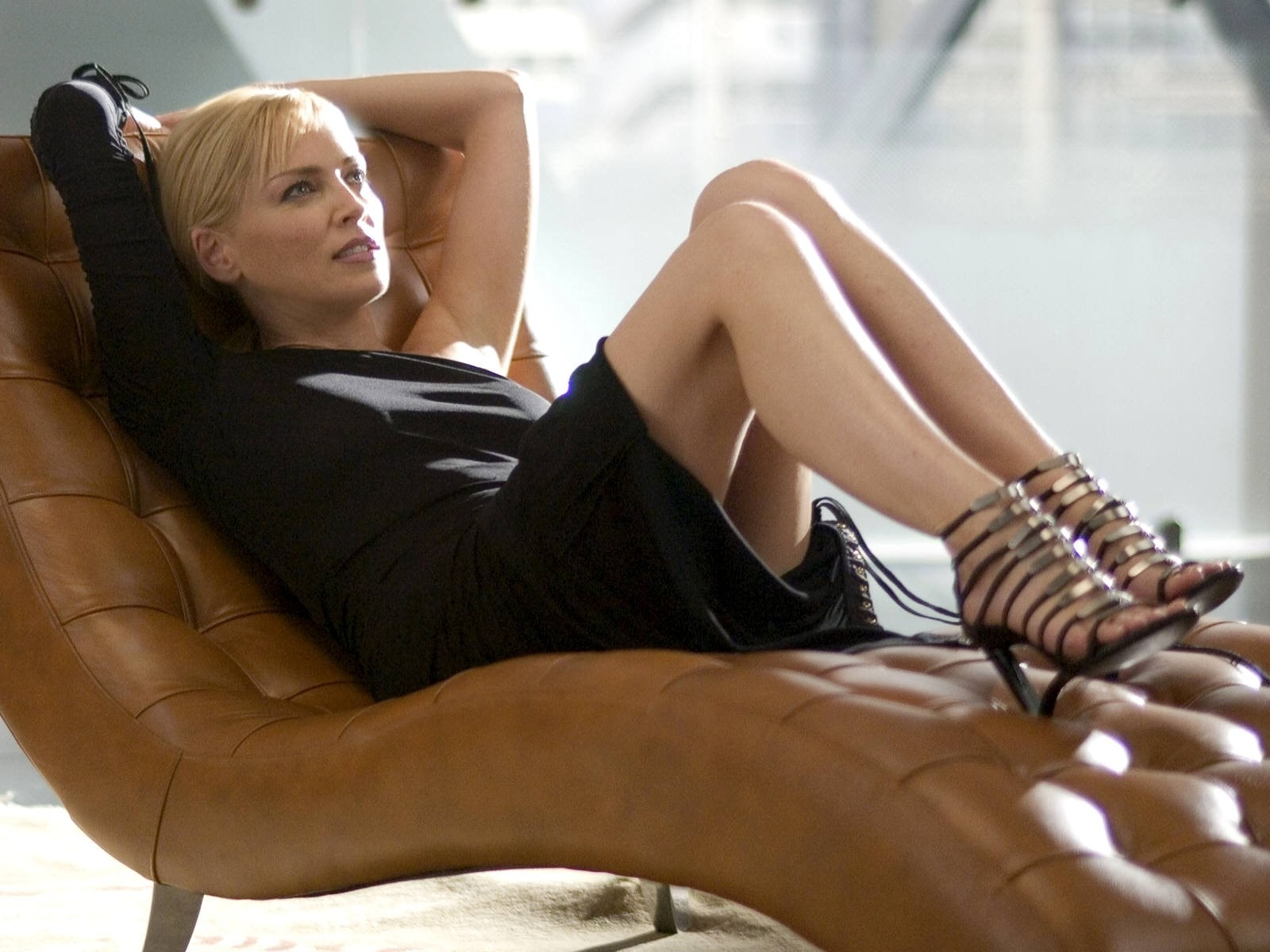 Sharon Stone Desktop wallpaper