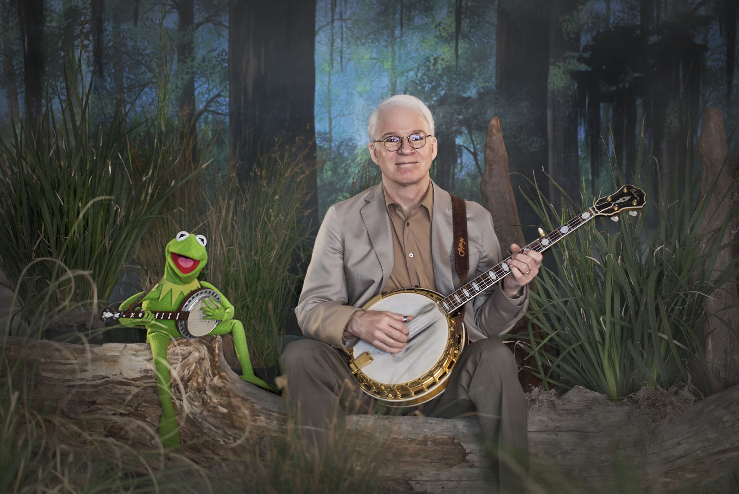 Steve Martin Desktop wallpaper