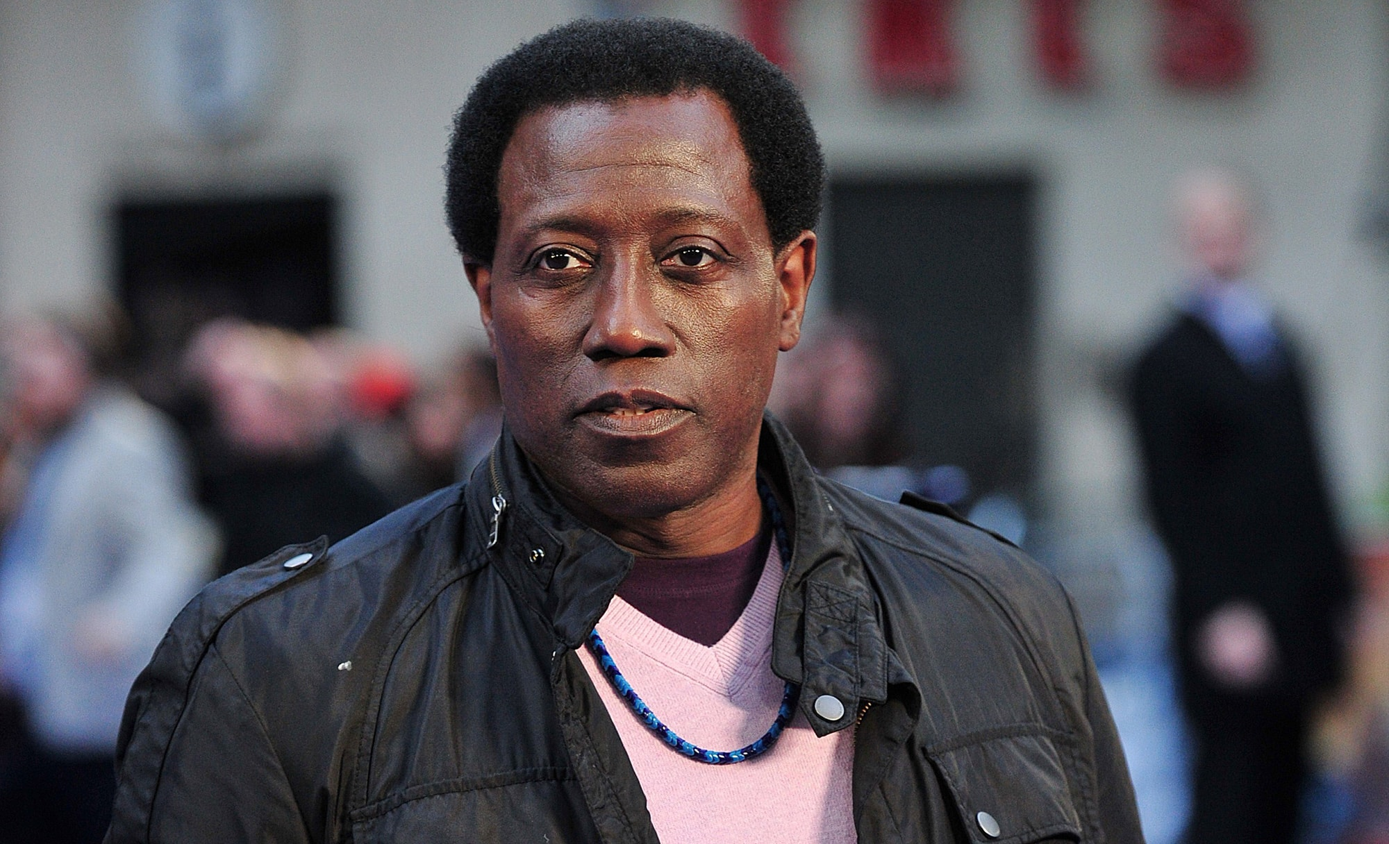 Wesley Snipes Desktop wallpaper