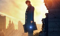 Fantastic Beasts and Where to Find Them Screensavers