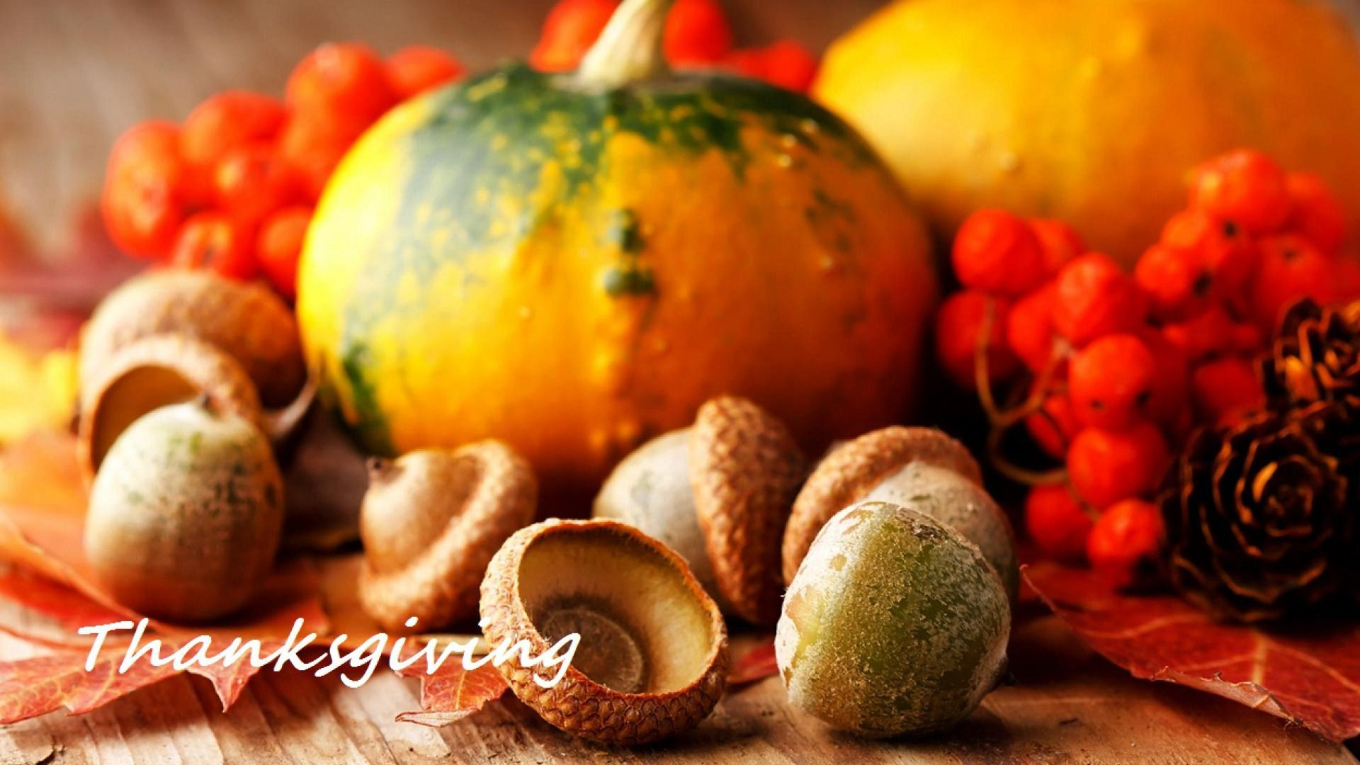 Thanksgiving Screensavers
