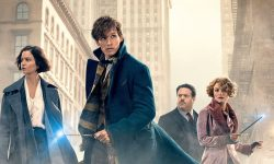 Fantastic Beasts and Where to Find Them Shiny wallpapers