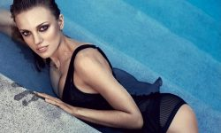 Bar Paly widescreen wallpapers