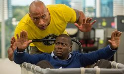 Central Intelligence widescreen wallpapers