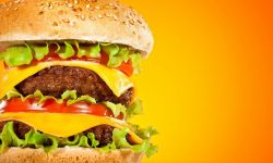 Cheeseburger widescreen wallpapers