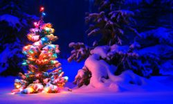 Christmas widescreen wallpapers