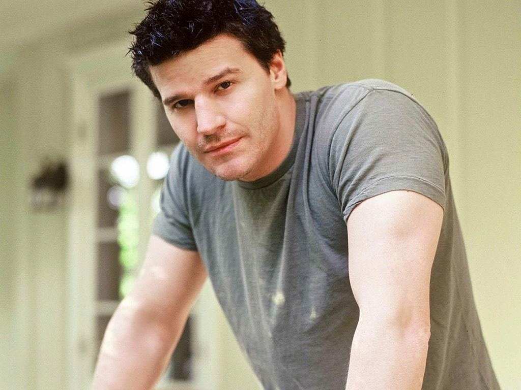 David Boreanaz widescreen wallpapers