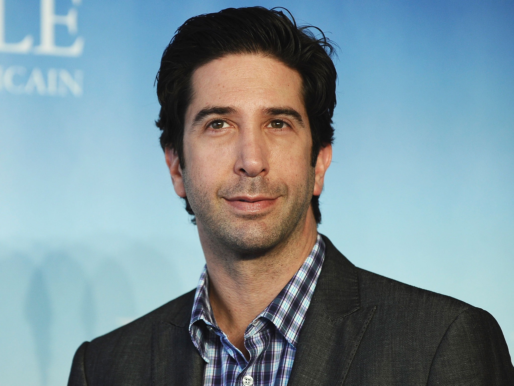 David Schwimmer widescreen wallpapers