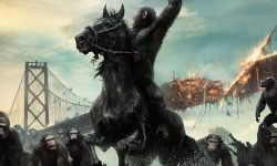 Dawn of the Planet of the Apes widescreen wallpapers