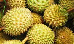 Durian widescreen wallpapers