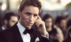 Eddie Redmayne widescreen wallpapers