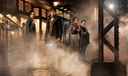 Fantastic Beasts and Where to Find Them widescreen wallpapersFantastic Beasts and Where to Find Them widescreen wallpapers