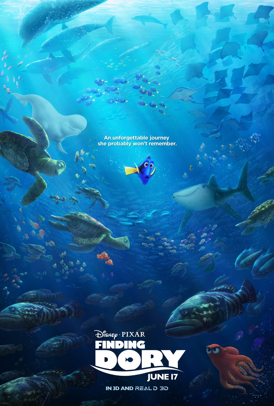 Finding Dory Hd Wallpapers 7wallpapersnet