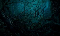 Into The Woods widescreen wallpapers
