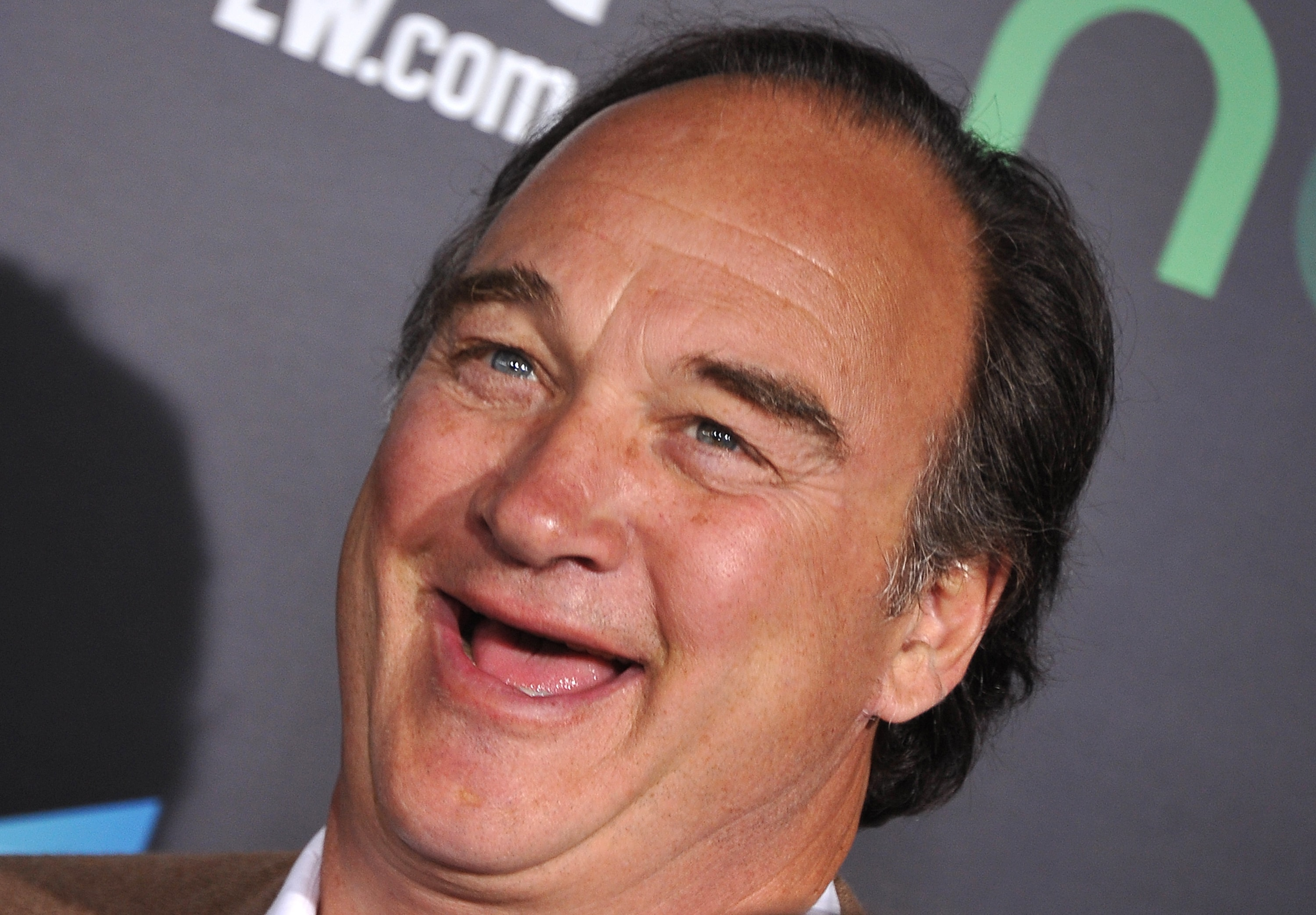 James Belushi widescreen wallpapers