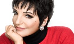 Liza Minnelli widescreen wallpapers