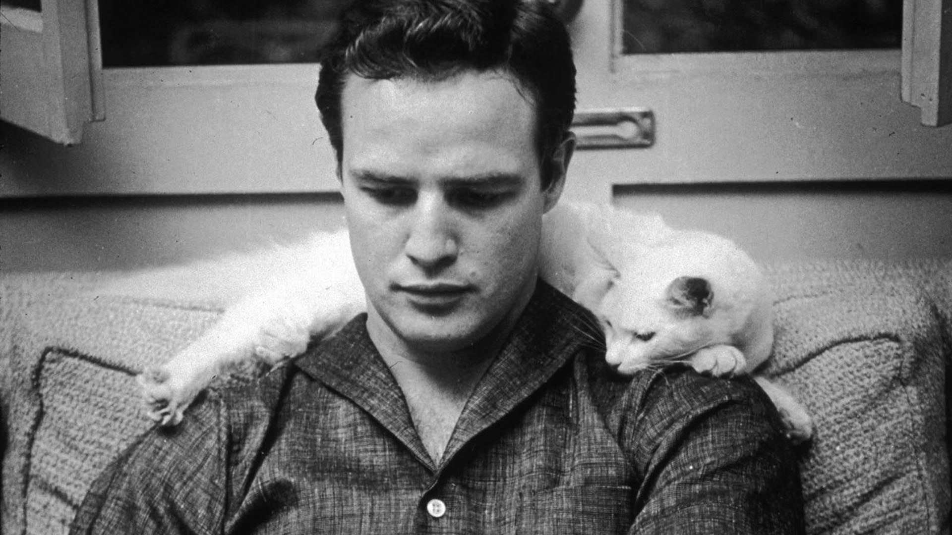 Marlon Brando widescreen wallpapers