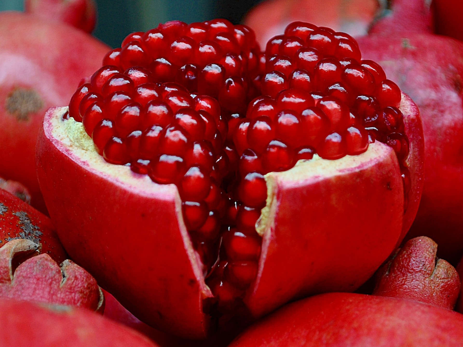 Pomegranate widescreen wallpapers
