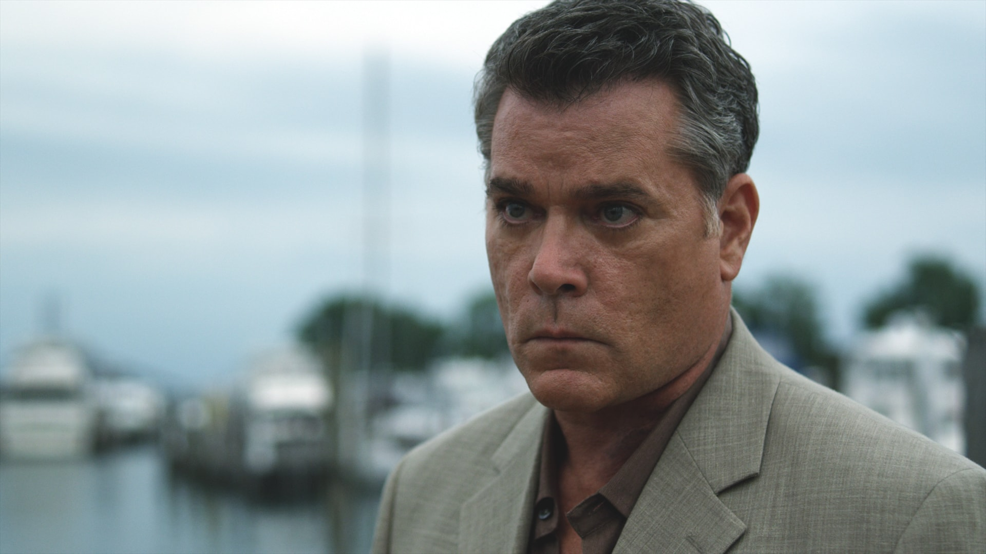 Ray Liotta widescreen wallpapers