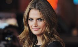 Stana Katic widescreen wallpapers