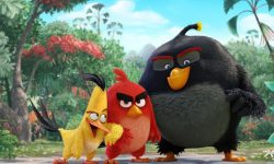 The Angry Birds Movie widescreen wallpapers