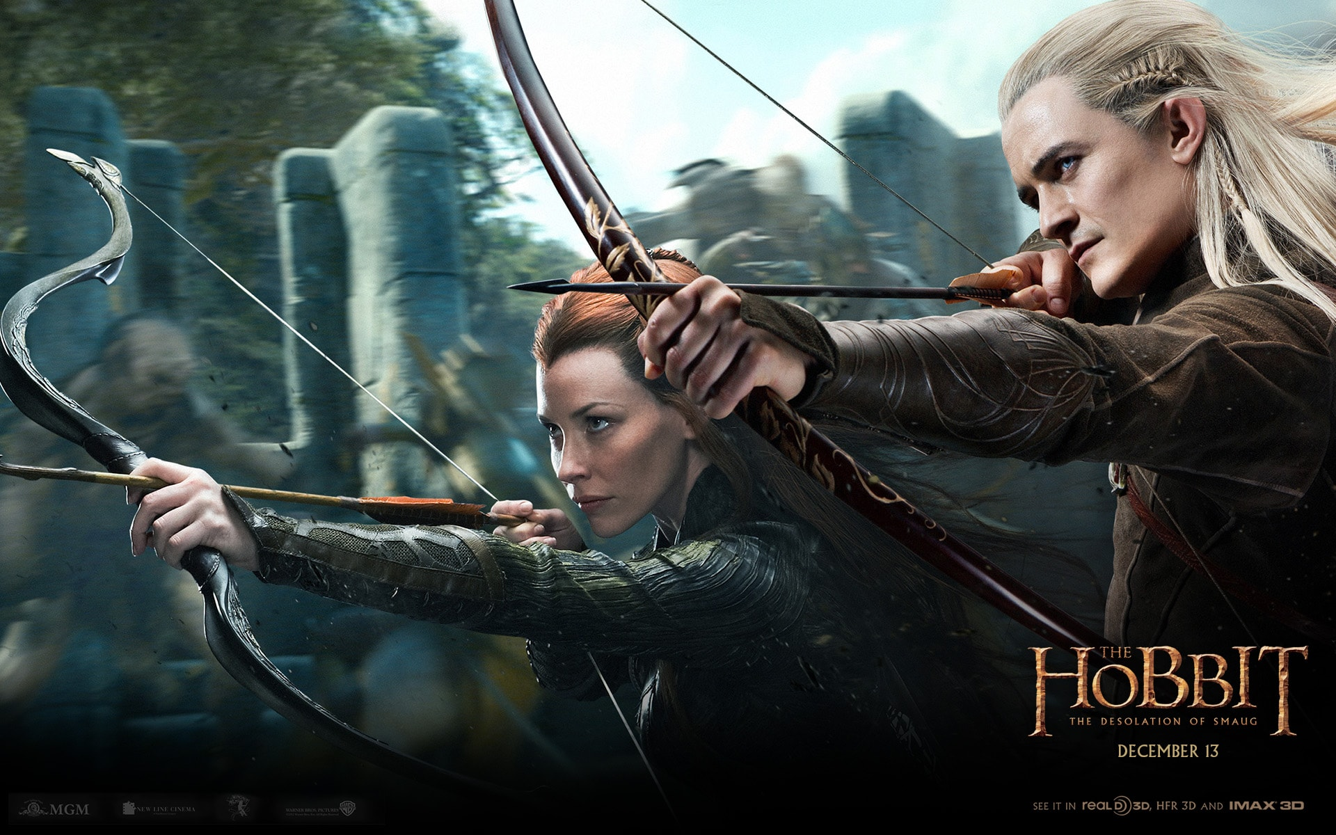 The Hobbit: The Desolation Of Smaug widescreen wallpapers