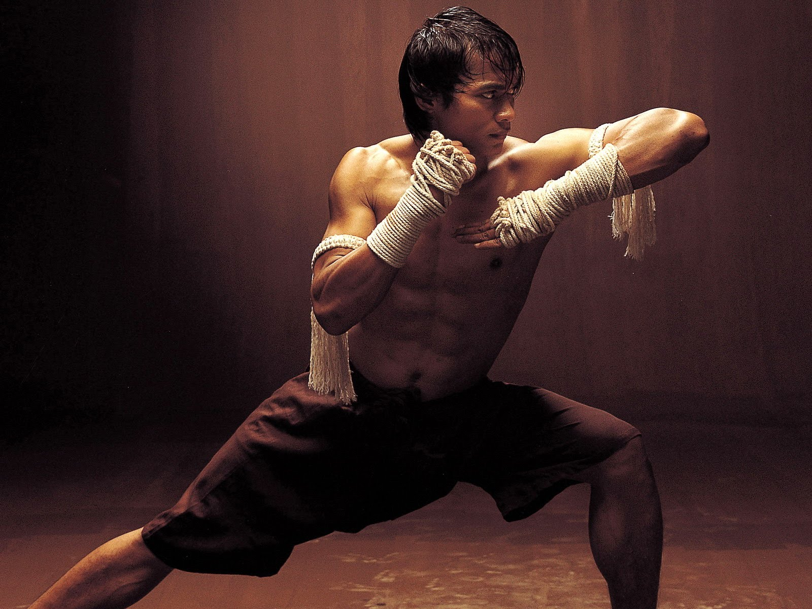 Tony Jaa widescreen wallpapers