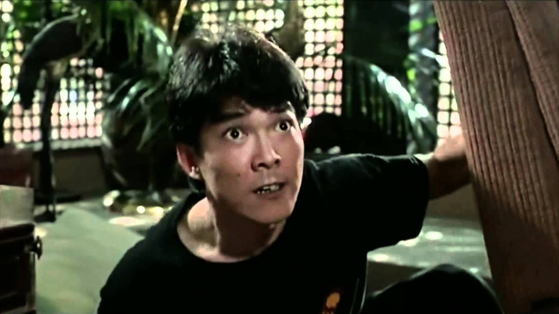 Yuen Biao widescreen wallpapers