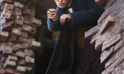 Fantastic Beasts and Where to Find Them Android wallpapers