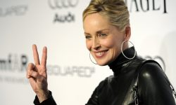 Sharon Stone Wide wallpapers