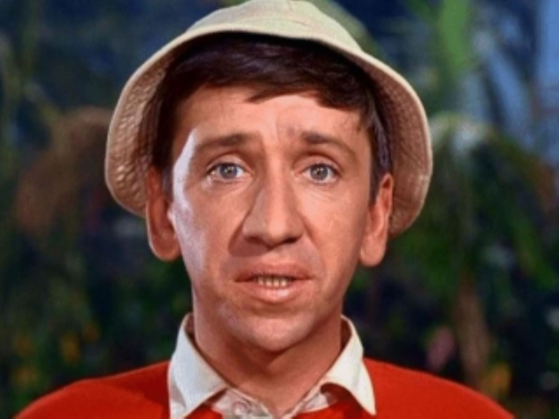 Bob Denver Wallpapers hd