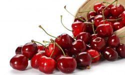 Cherry Pictures