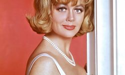 Dorothy Malone Pictures