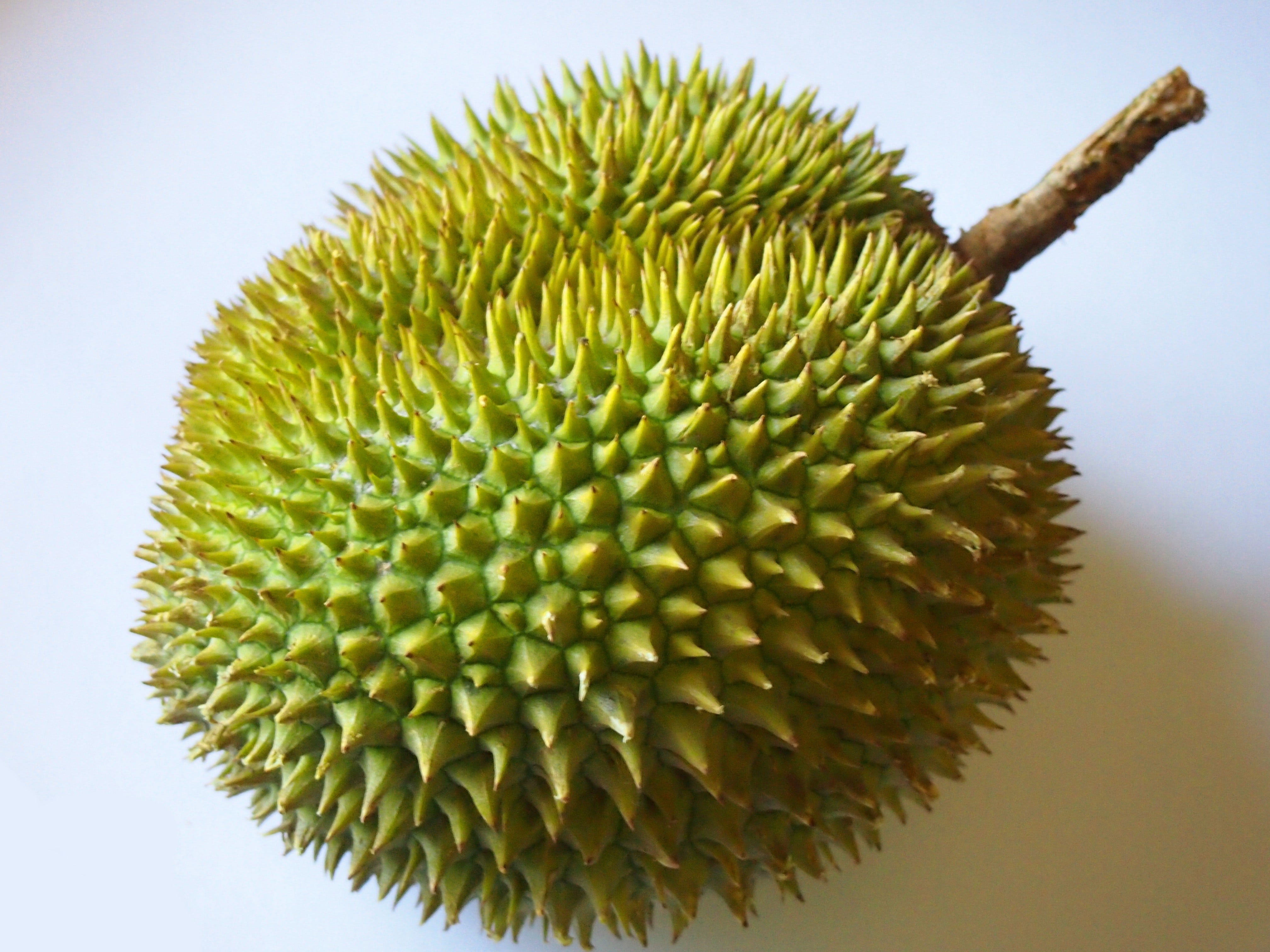 Durian Pictures