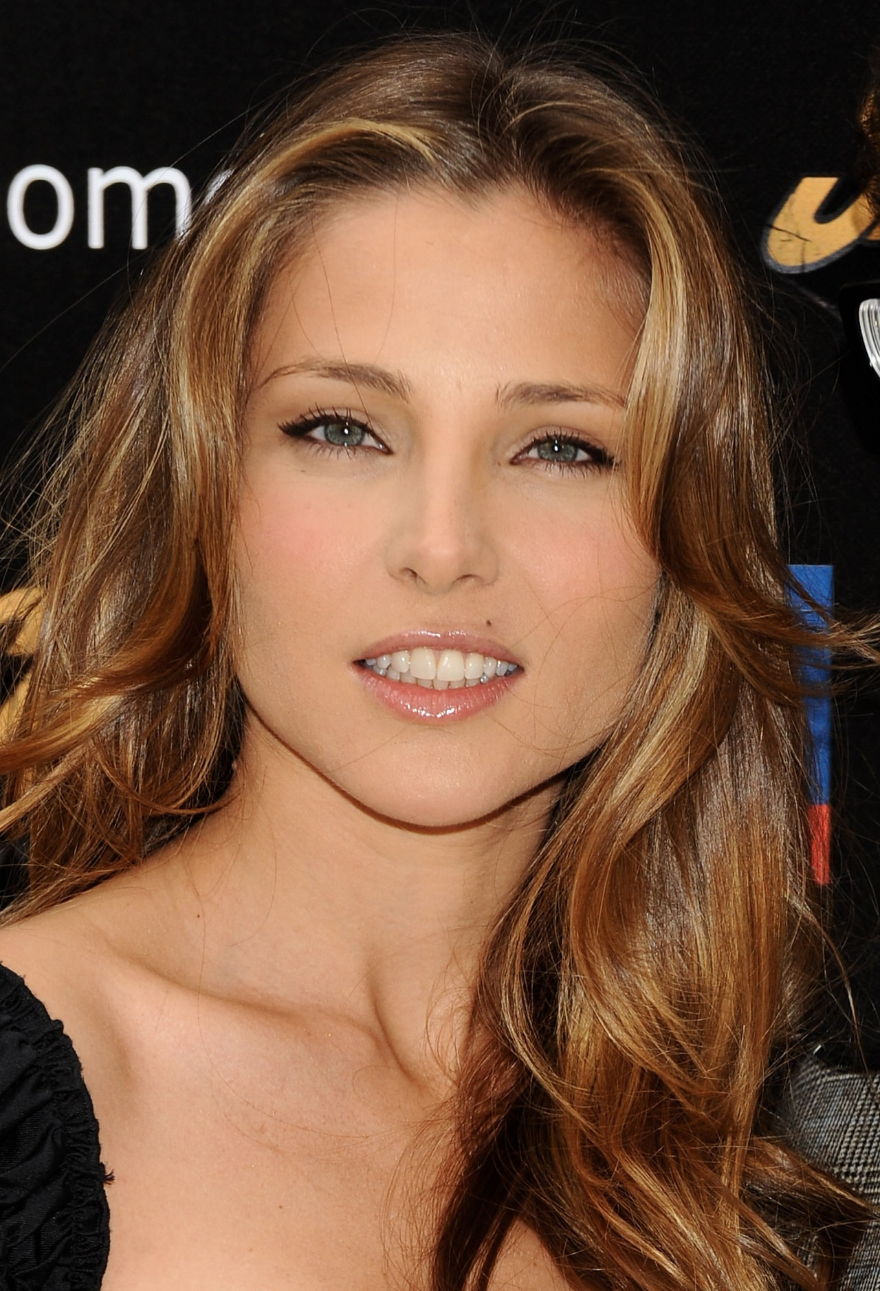 Elsa Pataky Pictures