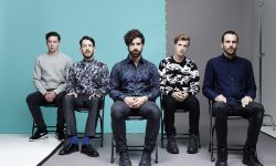 Foals Pictures