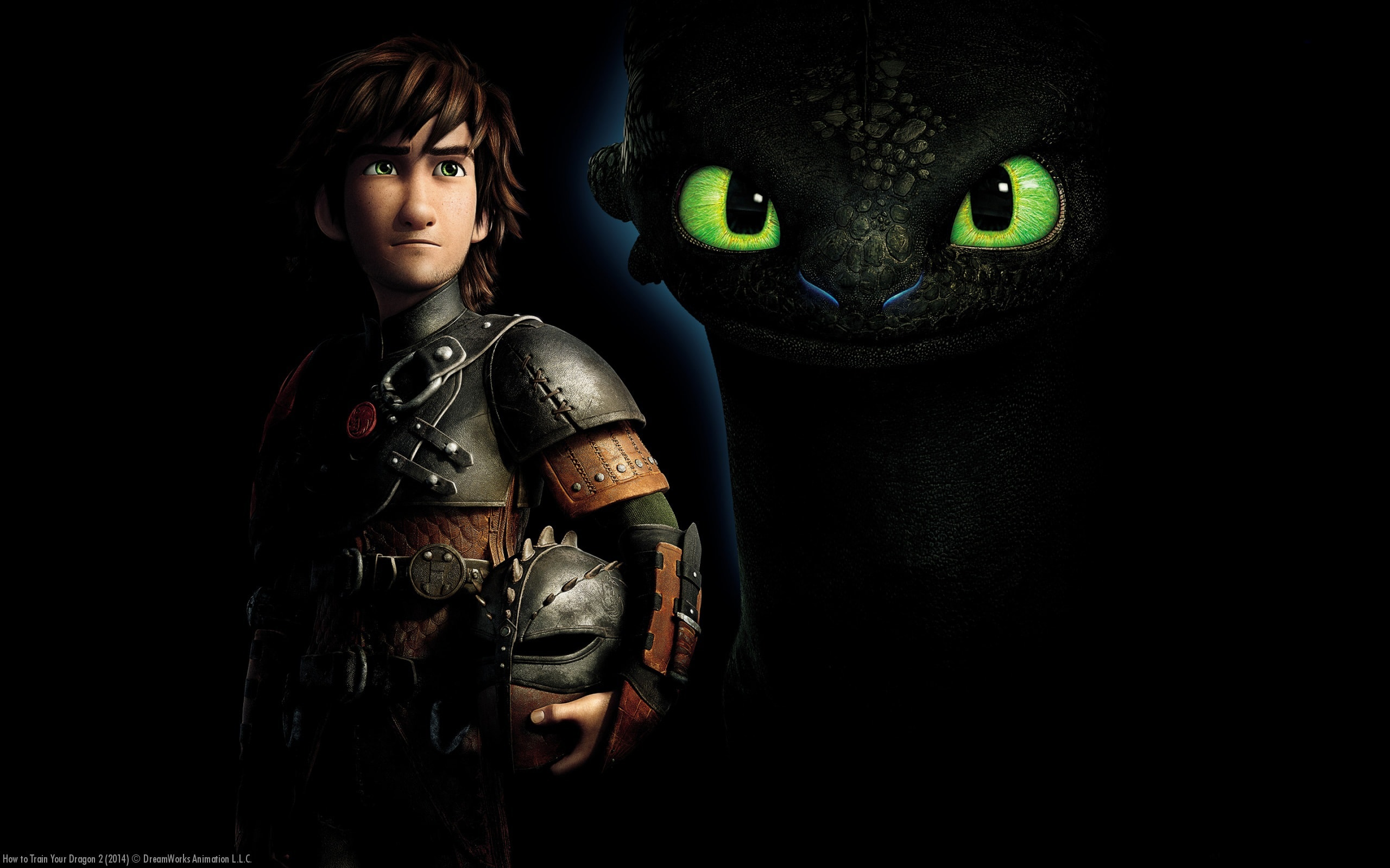 How to Train Your Dragon 2 Pictures