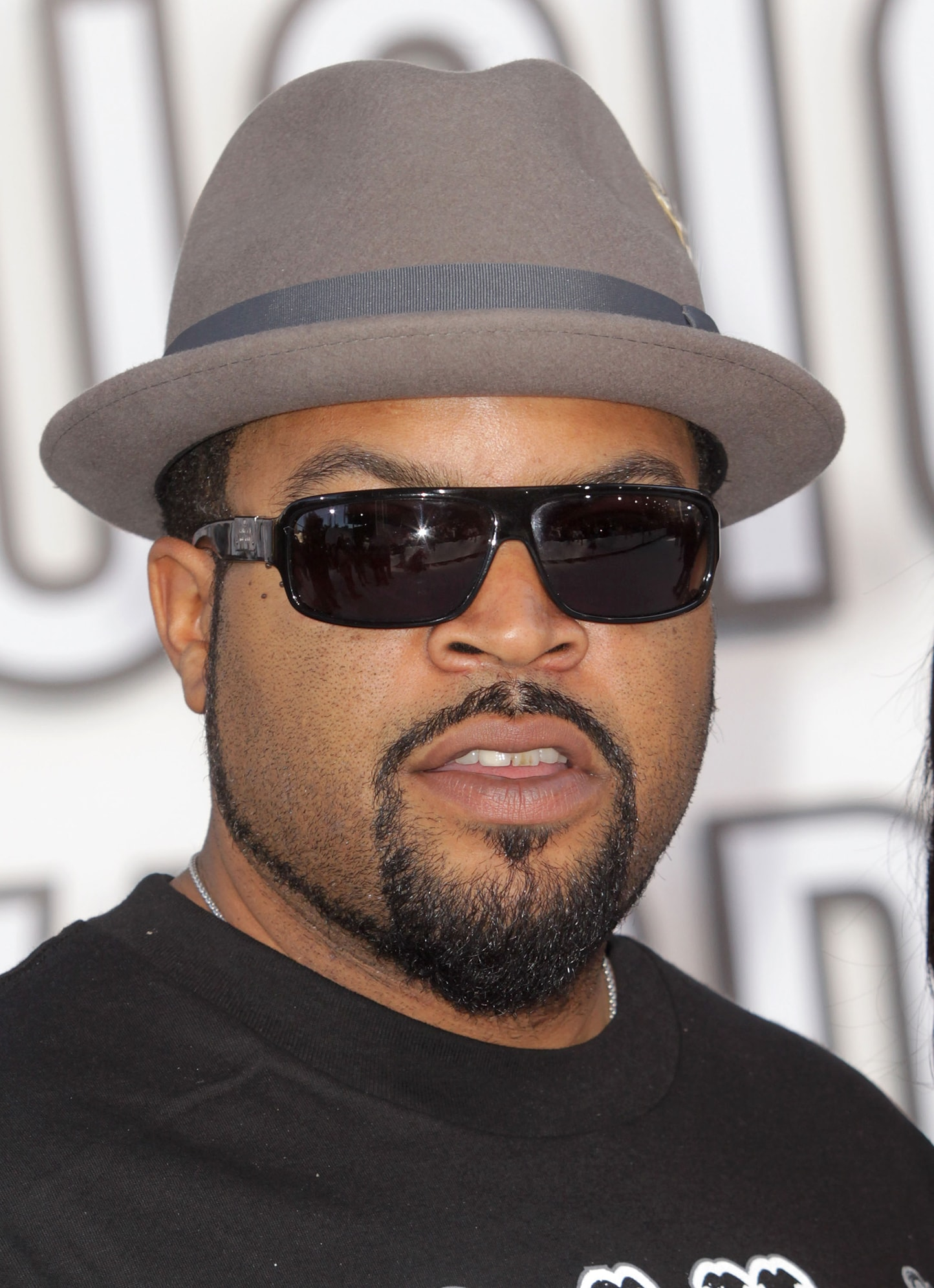 Ice Cube Pictures