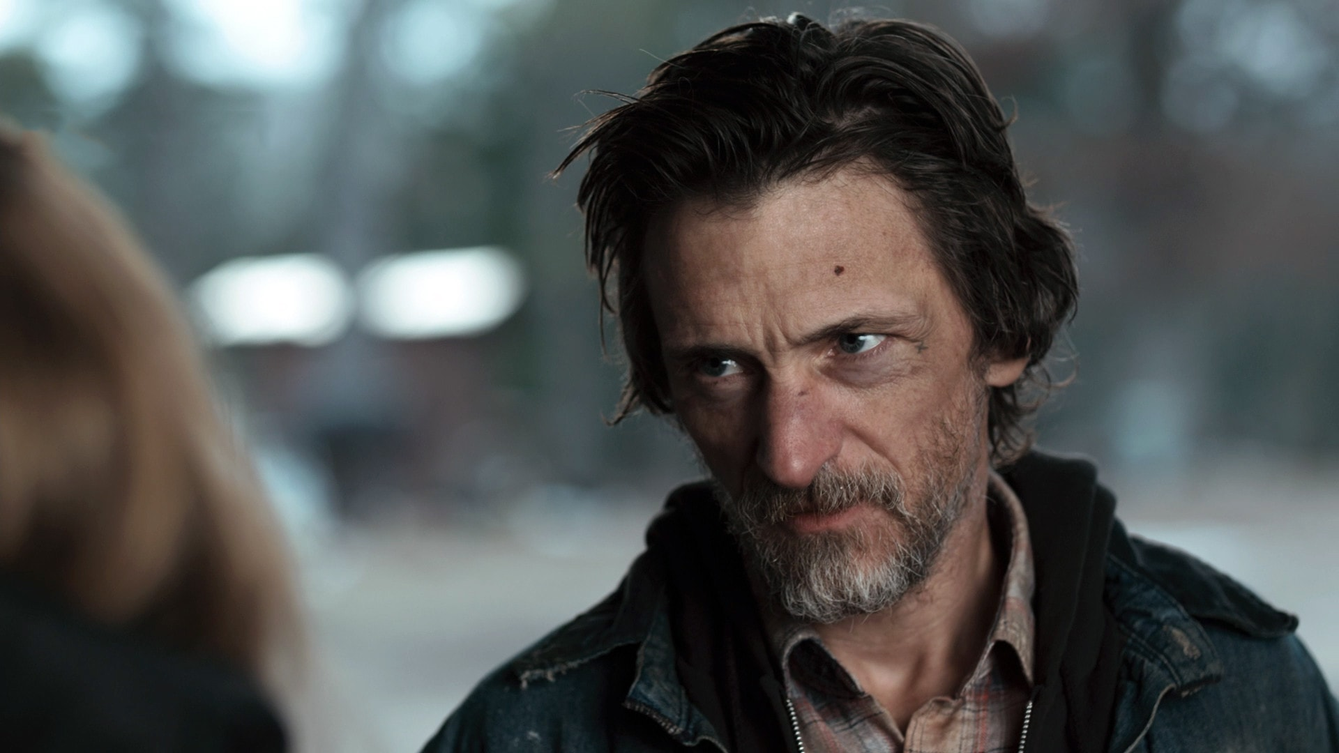John Hawkes Pictures