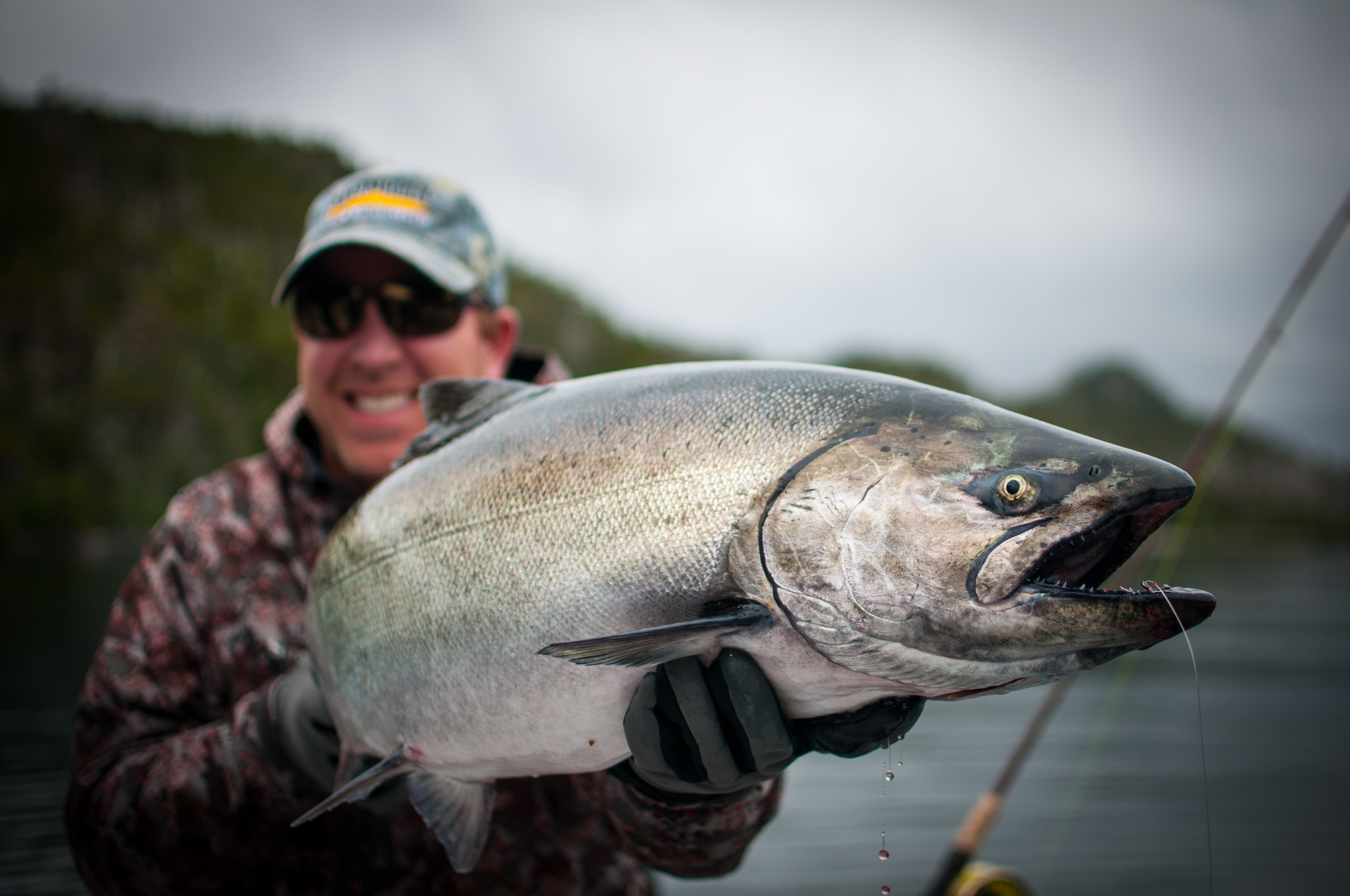King salmon Pictures