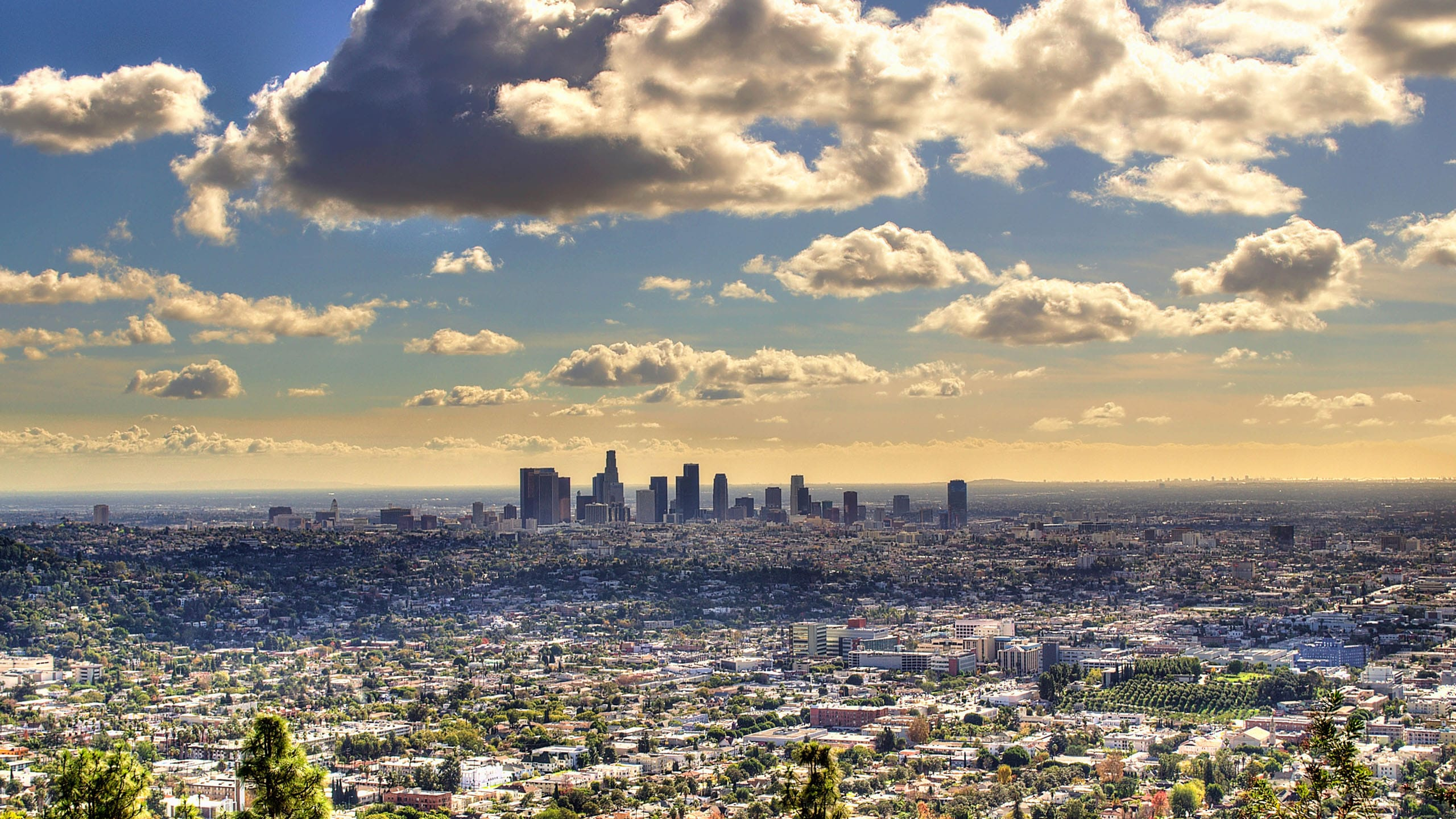 Los Angeles Pictures
