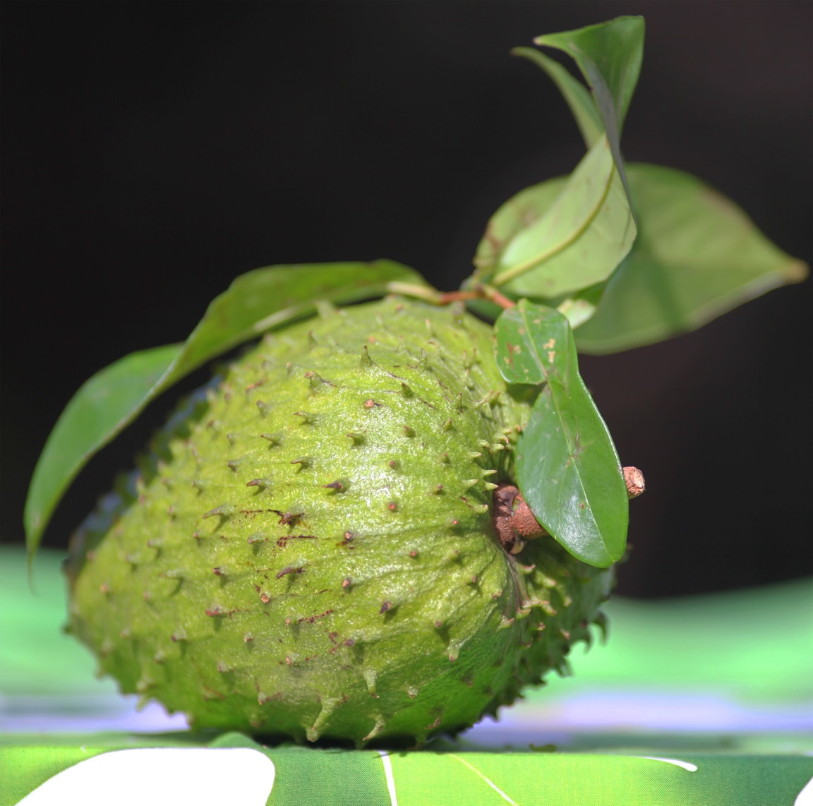 Soursop Pictures