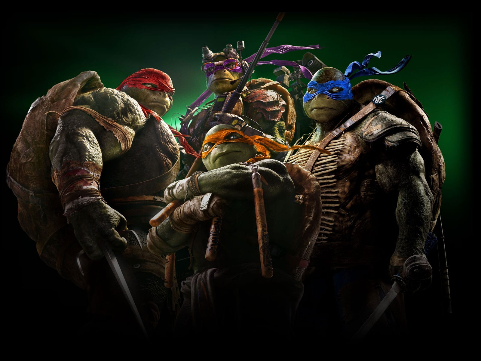 Teenage Mutant Ninja Turtles Pictures