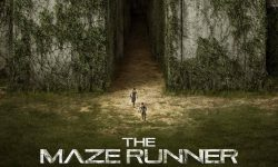 The Maze Runner Pictures