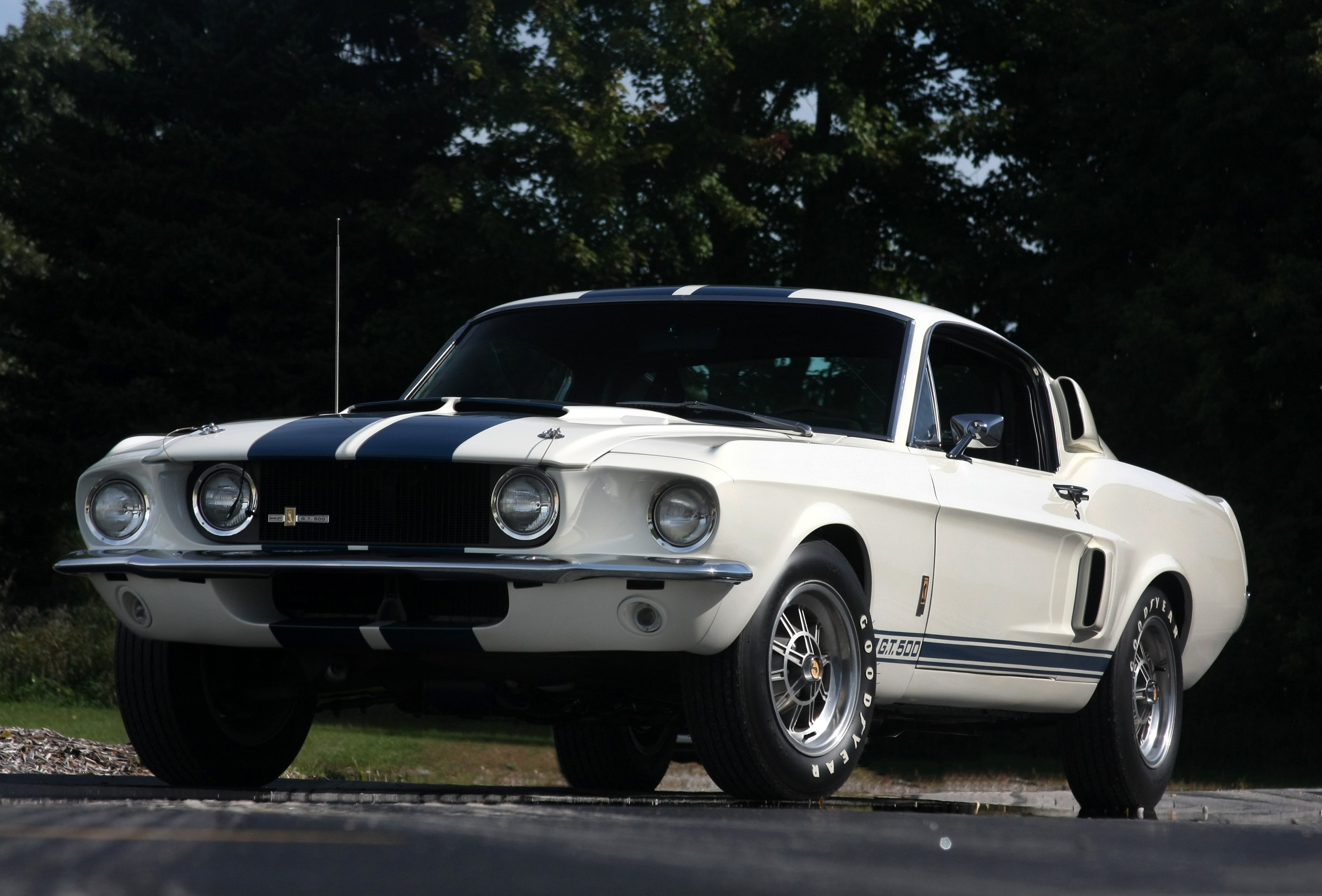1967 Shelby GT500 HQ wallpapers