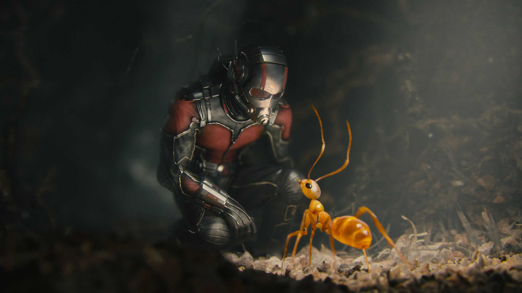 Ant-Man HQ wallpapers