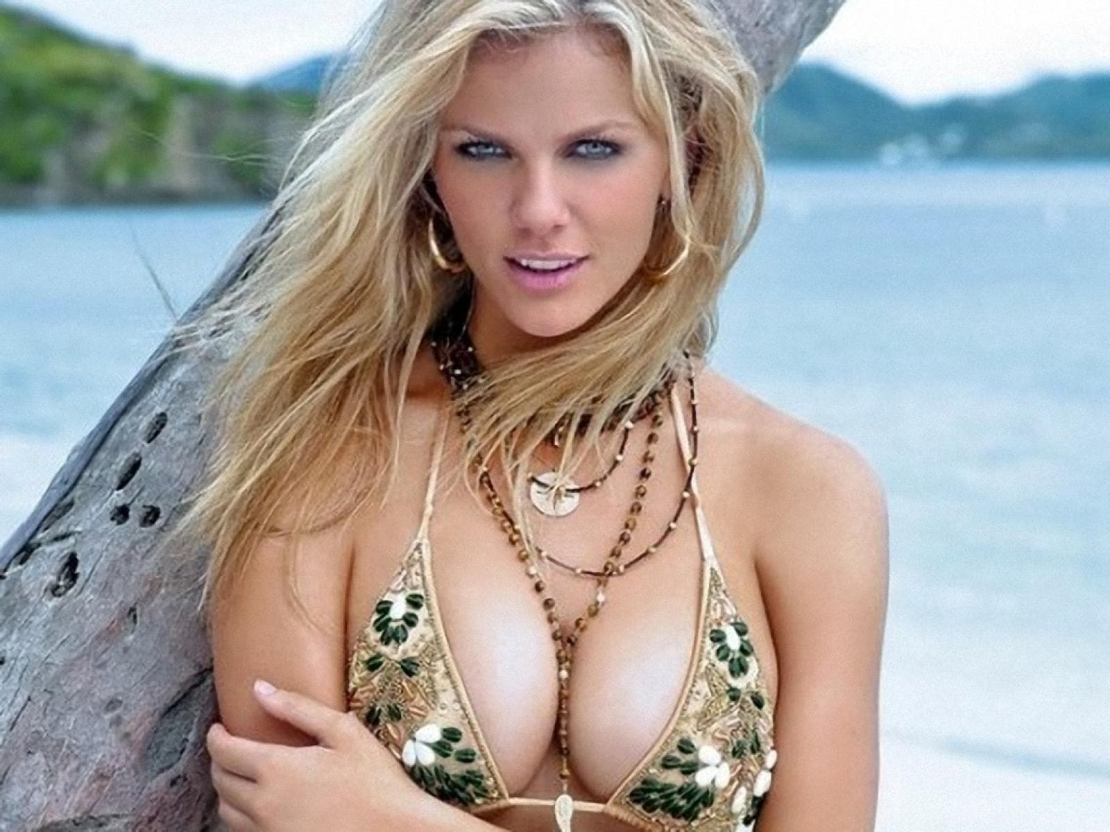 Brooklyn Decker HQ wallpapers
