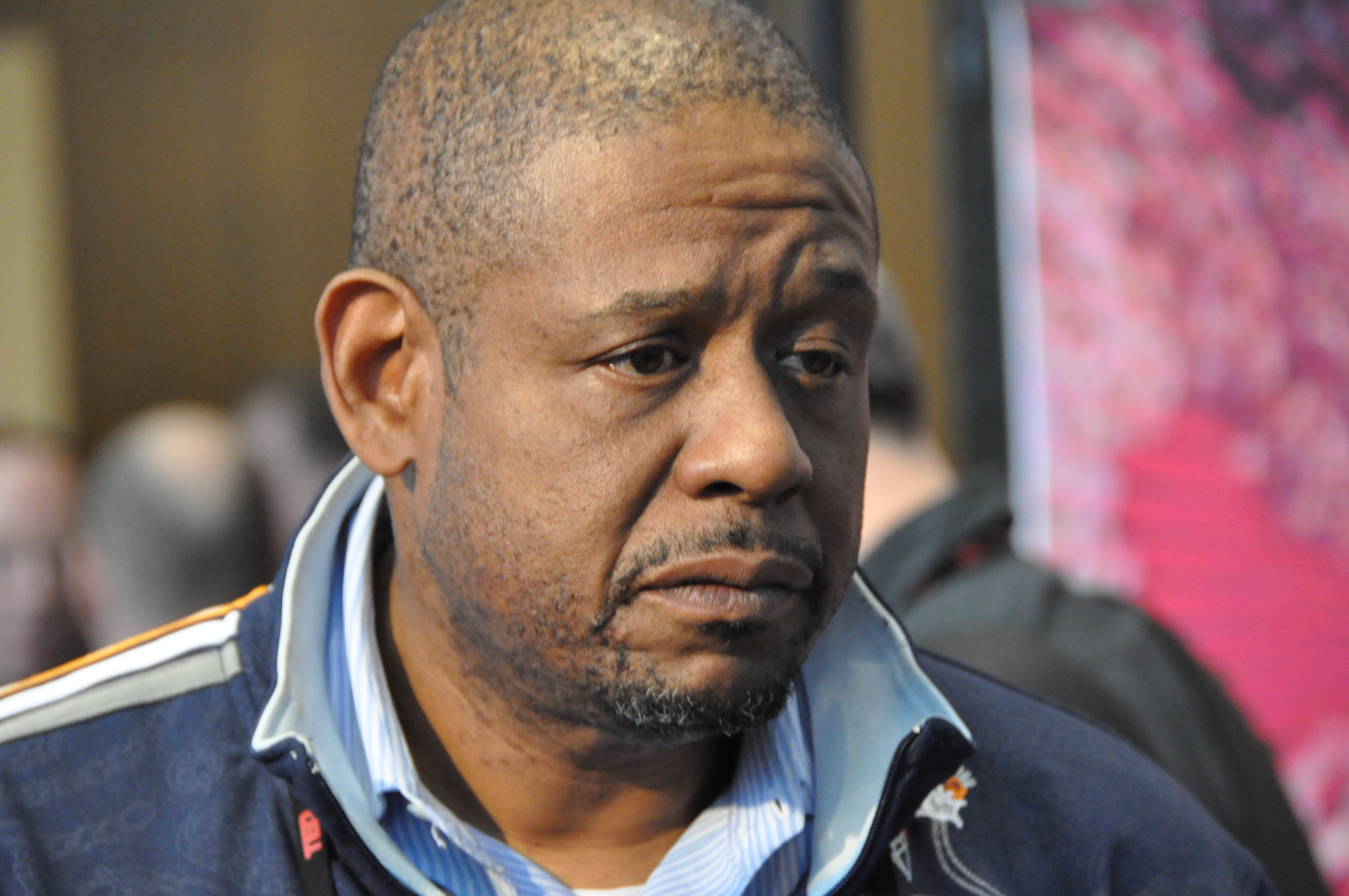 Forest Whitaker HQ wallpapers